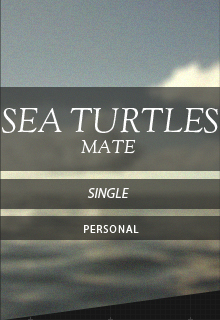 Sea Turtles, Mate